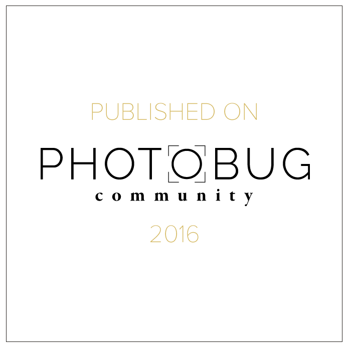 Photobug-community-will-khoury-photography.png