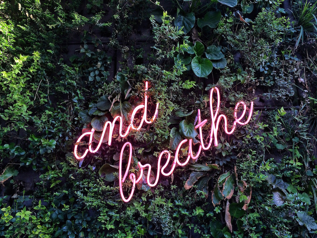 neon-sign-on-the-green-wall-of-plants_t20_goElg8.jpg