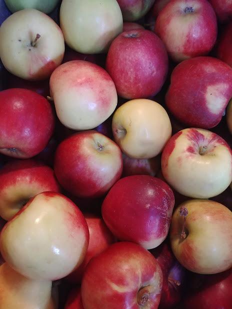 king david apple.jpg
