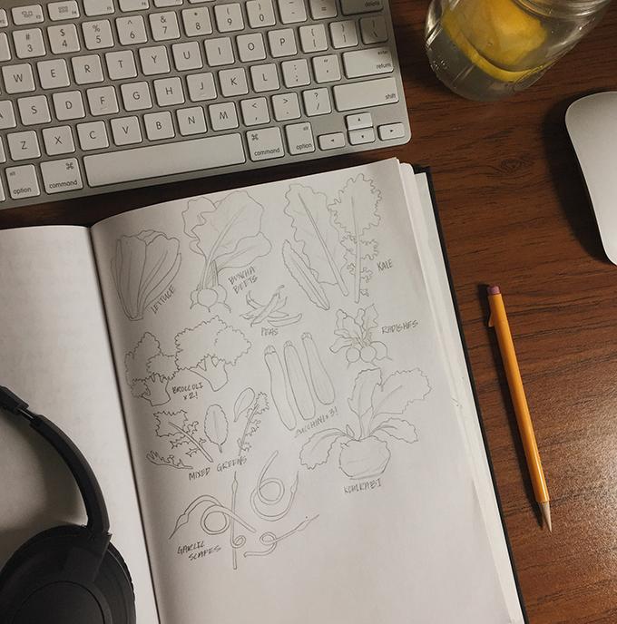 july 6 csa sketch.JPG