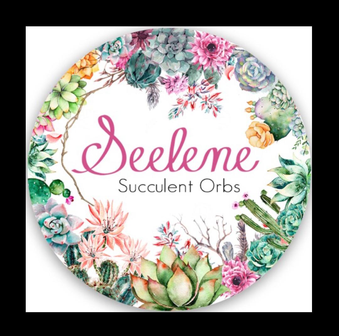 Seelene_Succulent_Orbs.png