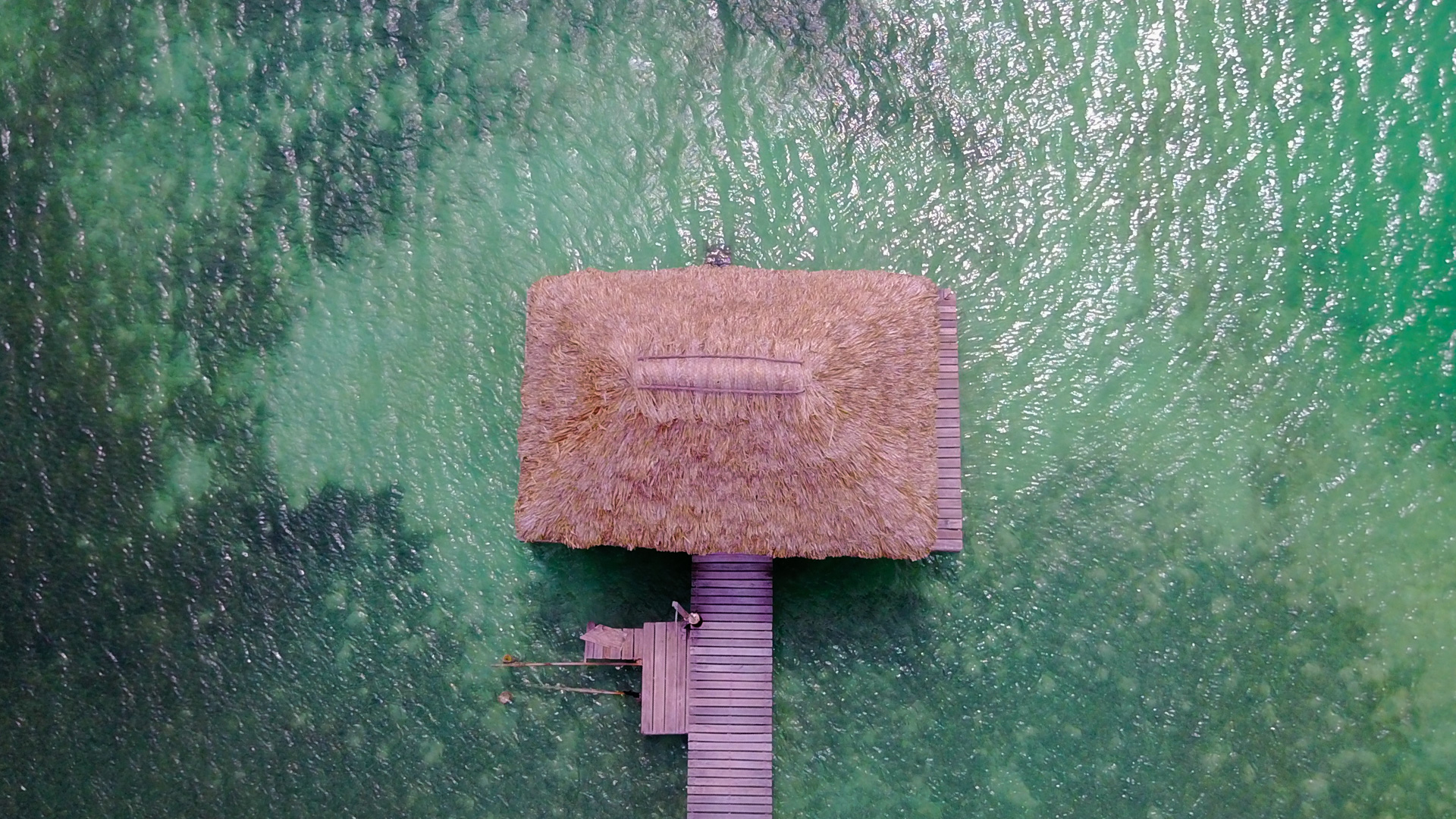 Drone Photography | up+up | Beach Hut 2.jpg