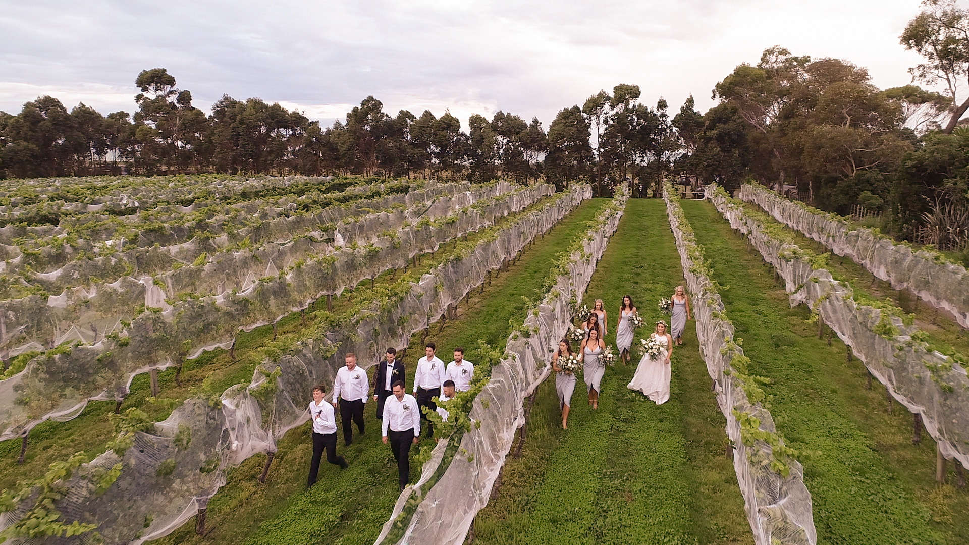 Drone Wedding Photos | Clearview Estate | Up&Up 7.jpg
