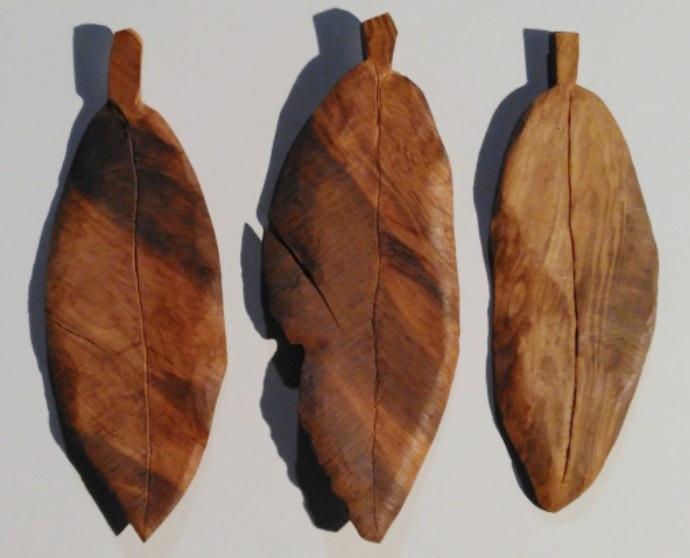 Wood leaves  (2).jpg