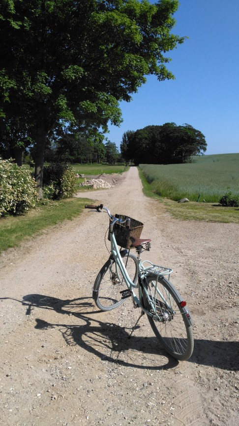 My first bike ride in Mols Bjerge