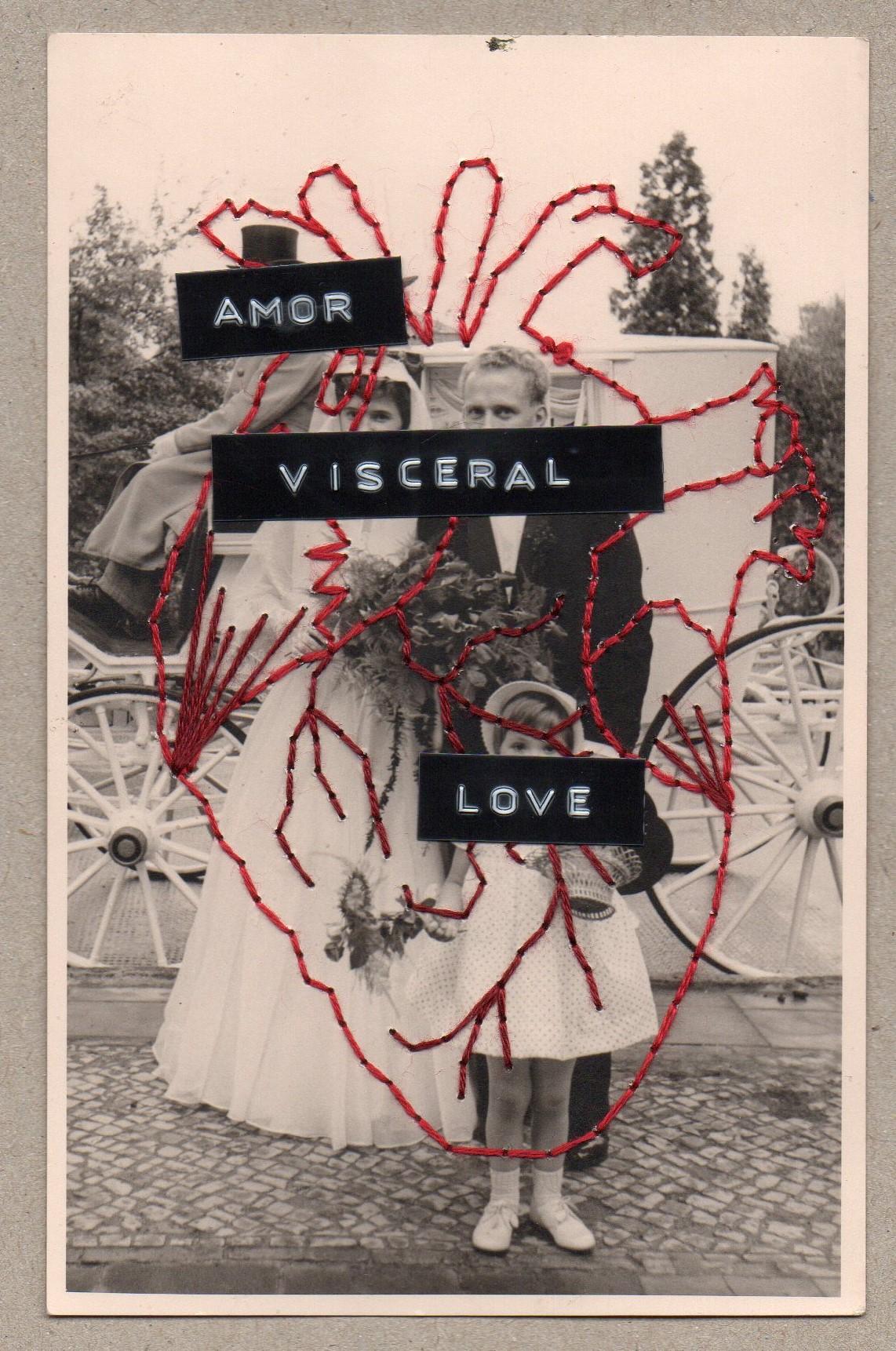 Amor Viceral 14x9cm.jpg