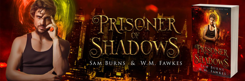 PrisonerofShadows-TwitterBanner.jpg