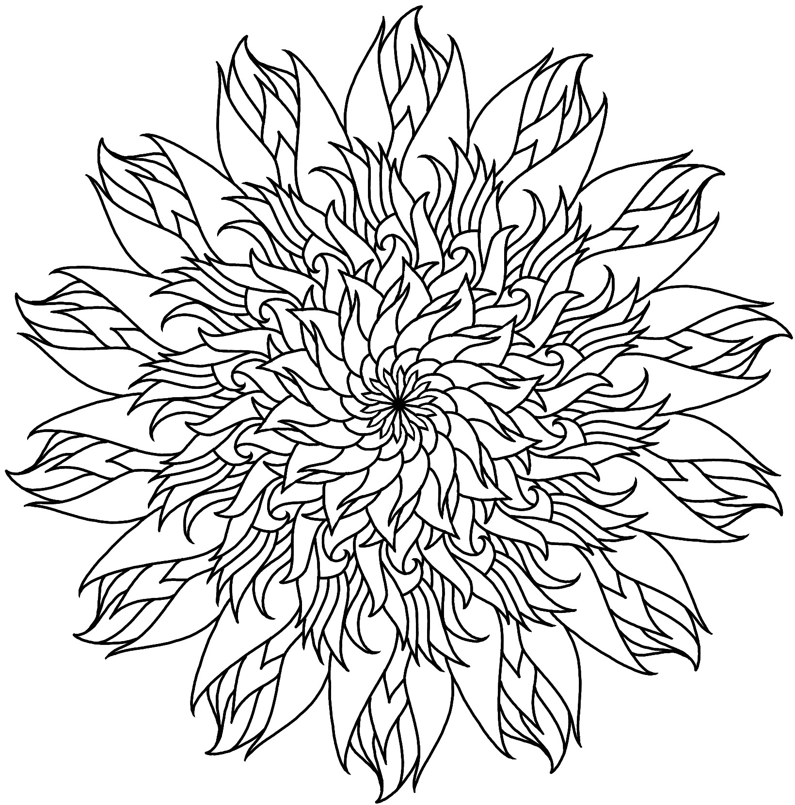Flame Flower