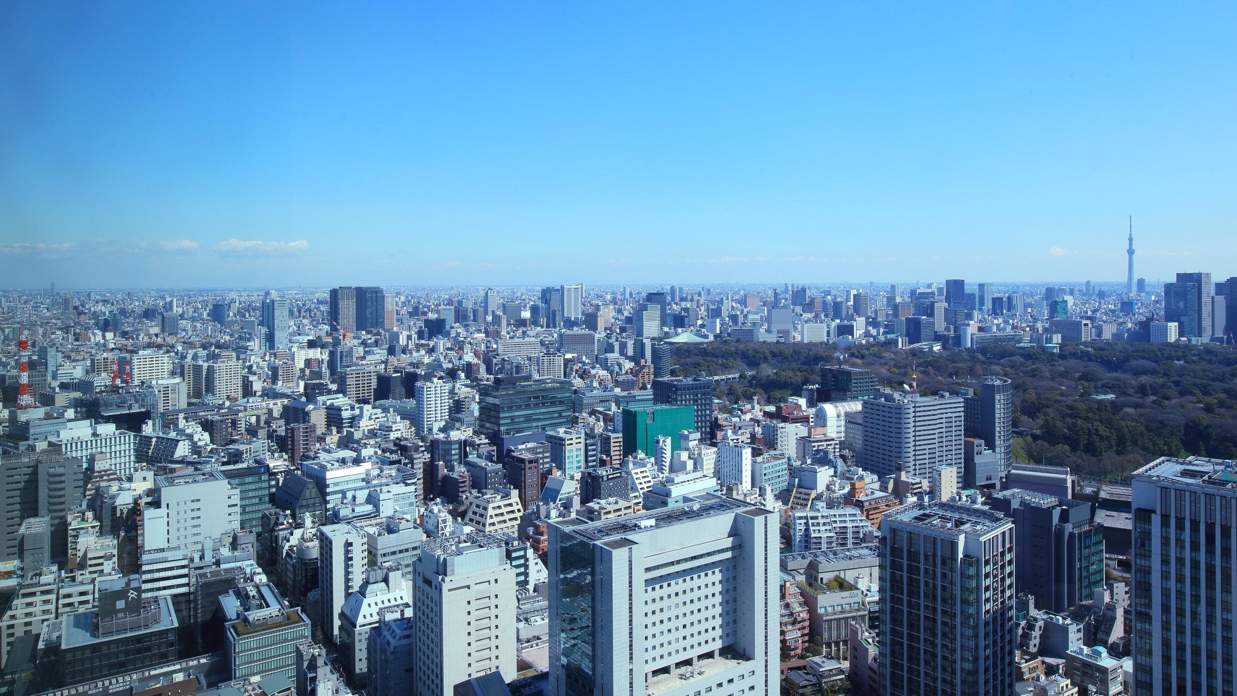 Tokyo (April 2017). Photo by Naomi Waltham-Smith.