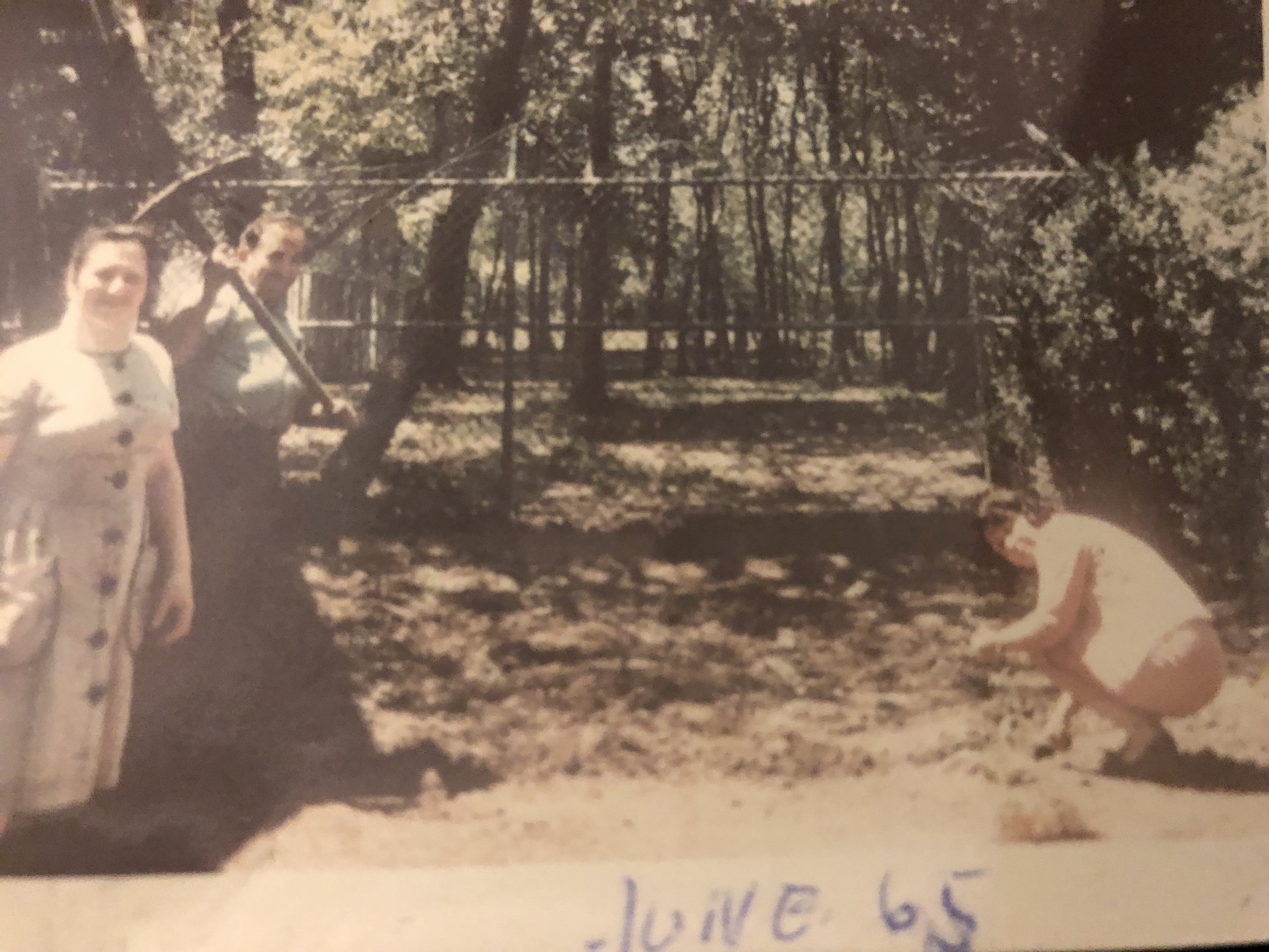 My parents on the left and Sarah Weber on the right gardening 846 Cross Avenue, Elizabeth, NJ June 1965