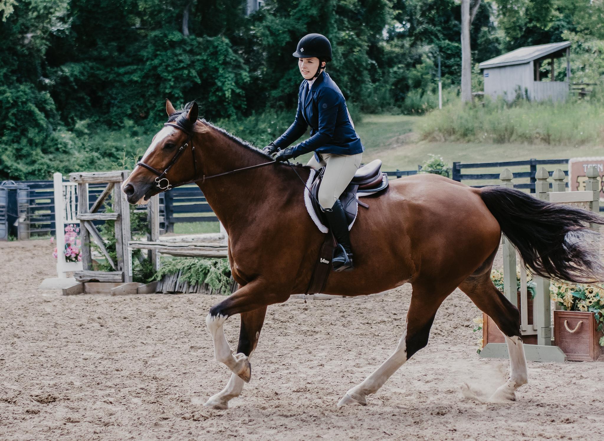 Pure Horse Sense | Ashley Ward | Jumping | Hunter Jumper | Horse Show | Equestrian Blog