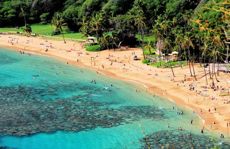 Hanauma Bay's 2,600 daily visitors contaminate the water with chemical sunscreens containing oxybenzone and octinoxate, which are found in a majority of big brand sunscreens.