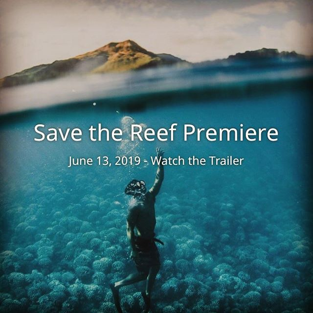Check out the exclusive launch party and World Premiere of SAVE THE REEF, a documentary film by Karmagawa @karmagawa and directed by Amir Zakeri @amirzakeri at Kualoa Ranch @kualoaranch — 6pm this Thursday, June 13.  Tickets are complimentary, but rsvp's are required.  Kōkua Sun Care will be there to show support and help educate about reef safe sunscreen.  For more info, go to SaveTheReef.org or @savethereef — an environmental initiative created by the charity community Karmagawa. 🐟🐟🐟🐟🐟🐟🐟🐟🐟🐟🐟🐟 #karmagawa  #savethereef #worldpremiere #kualoaranch #reefsafe #reefsafesunscreen #kokuasuncare #zincsunscreen