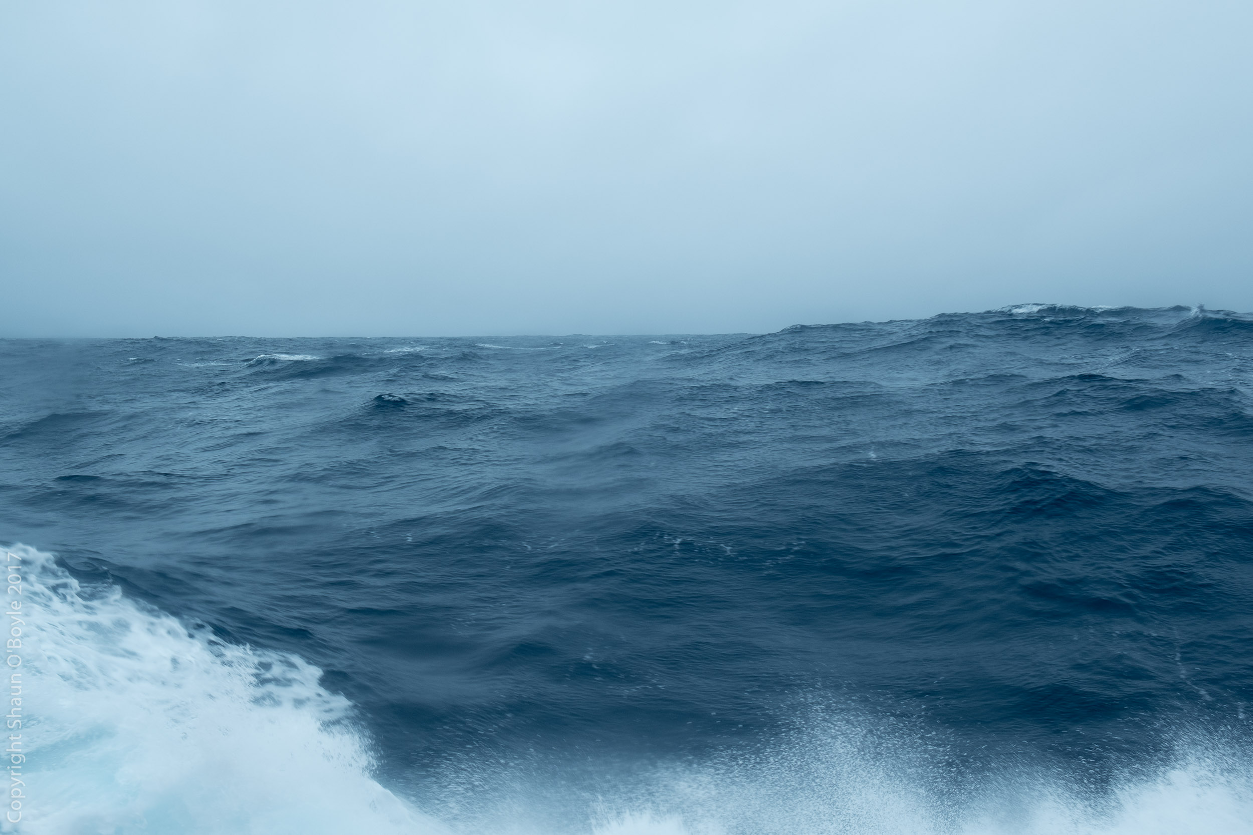 Drake Passage in a less welcoming mood. The ship was rocking 15 degrees side to side and plunging vertically 15-20 feet. A never ending roller coaster ride. Did I mention that I was sea sick?Barfalunga for 2 days.