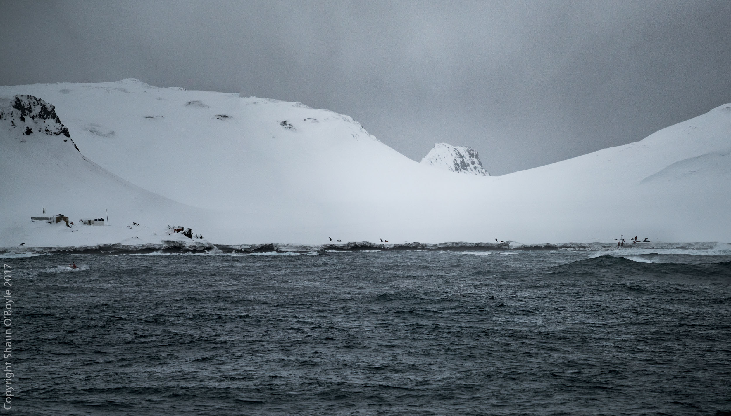 Sledging loads from the zodiac landing to the NOAA hut on Cape Shirreff, South Shetland Islands.