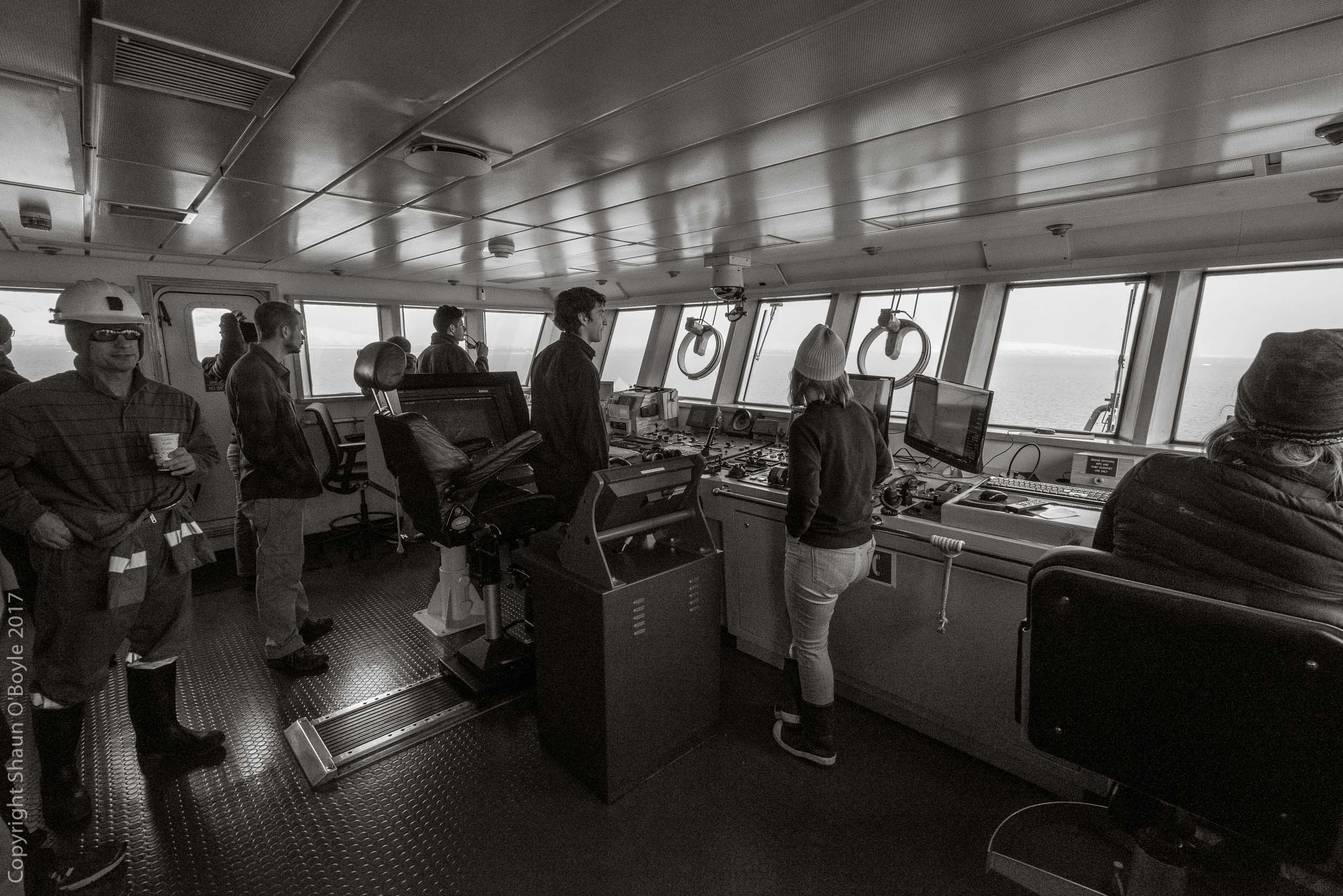 Cruising the Neumayer Channel