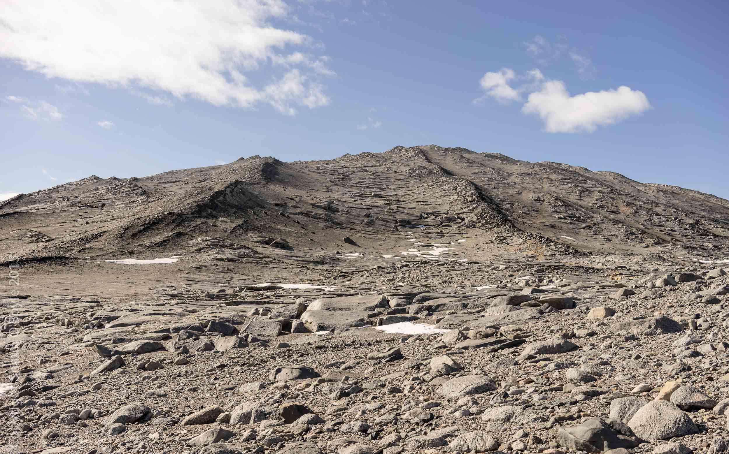 Climbing Nussbaum Riegel