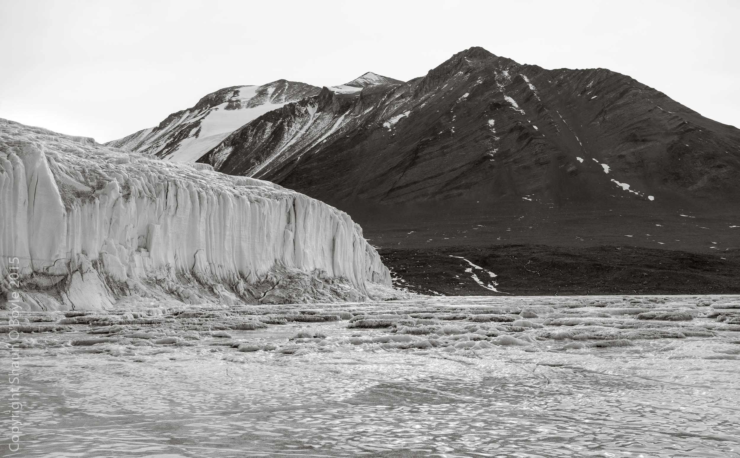 Canada Glacier from Lake Fryxell