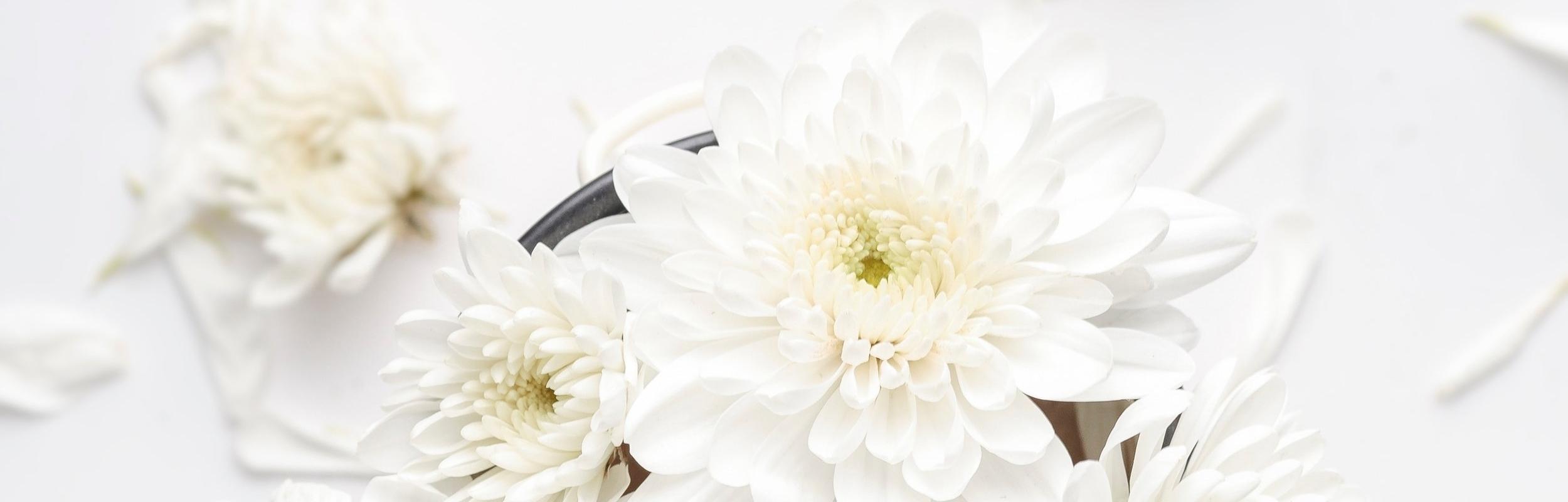 gifts that bloom header.jpg