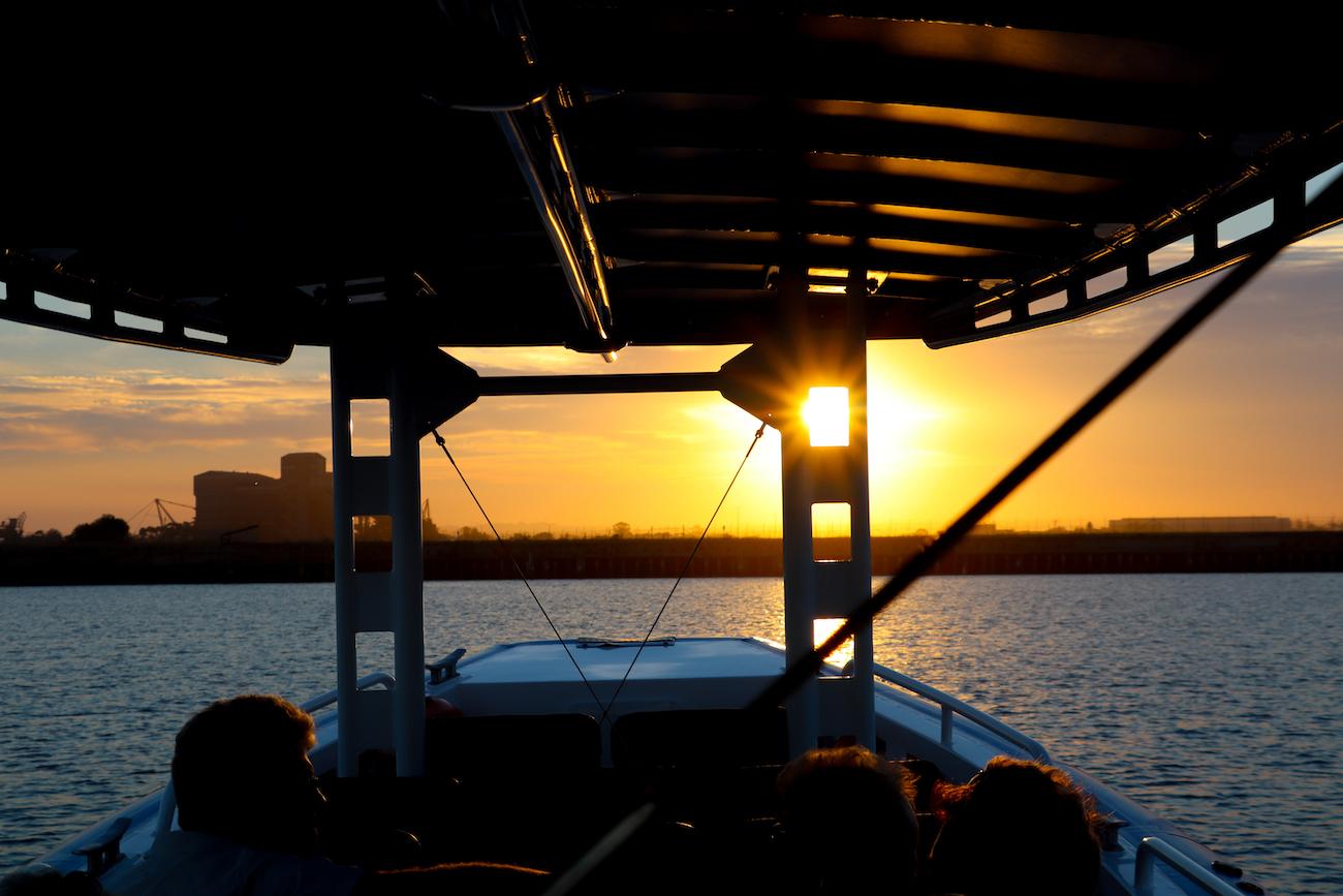 Cruise-Hunter-River