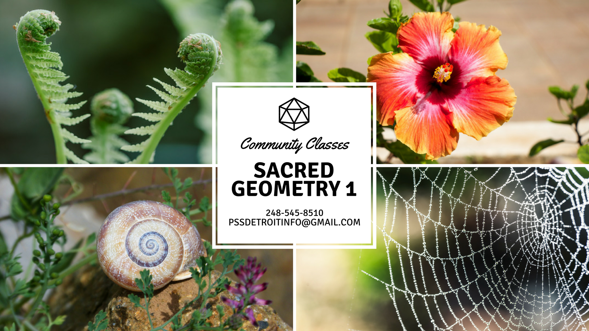Sacred Gemetry 1.png