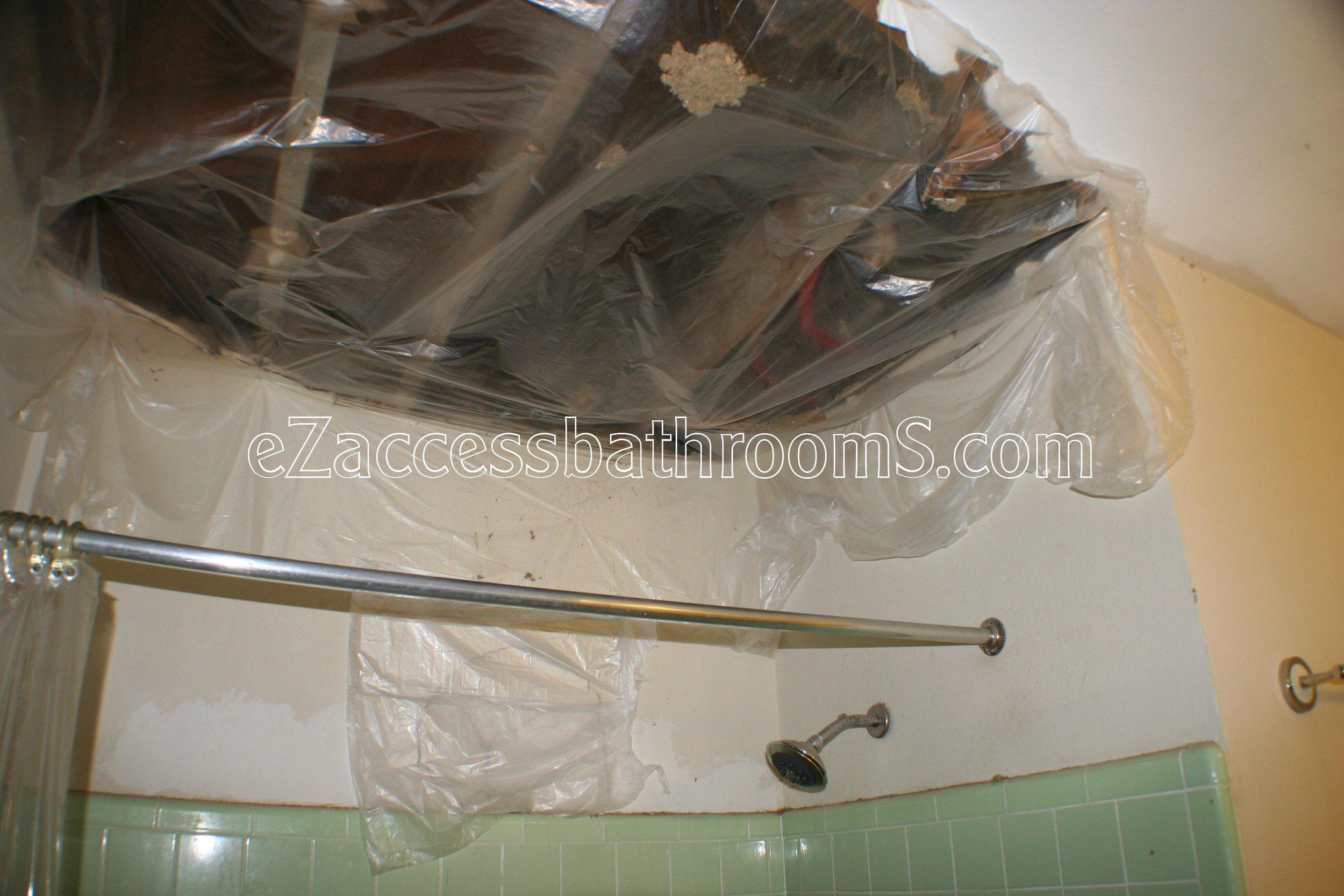 rollin shower ezaccessbathrooms.com 0017.JPG