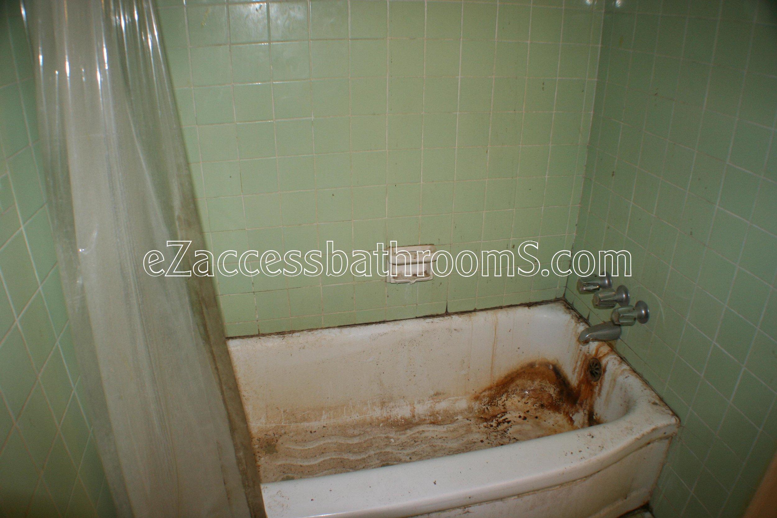 rollin shower ezaccessbathrooms.com 0023.JPG