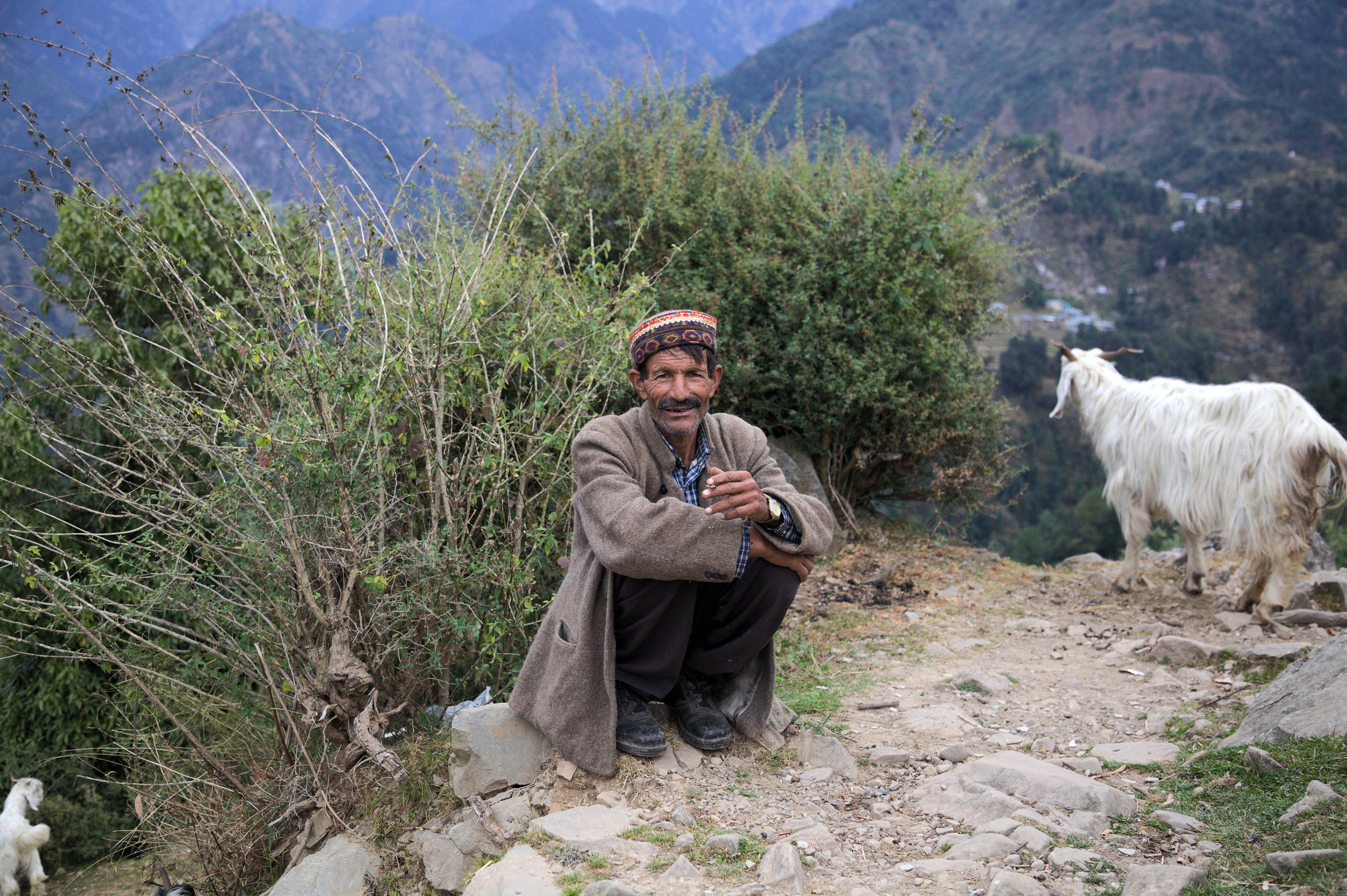 Kisan Chand, a Gaddi shepherd from Dharamsala, sitting outside Naddi village on an November morning. He has just arrived from Indrahar Pass and is heading south for the winter.