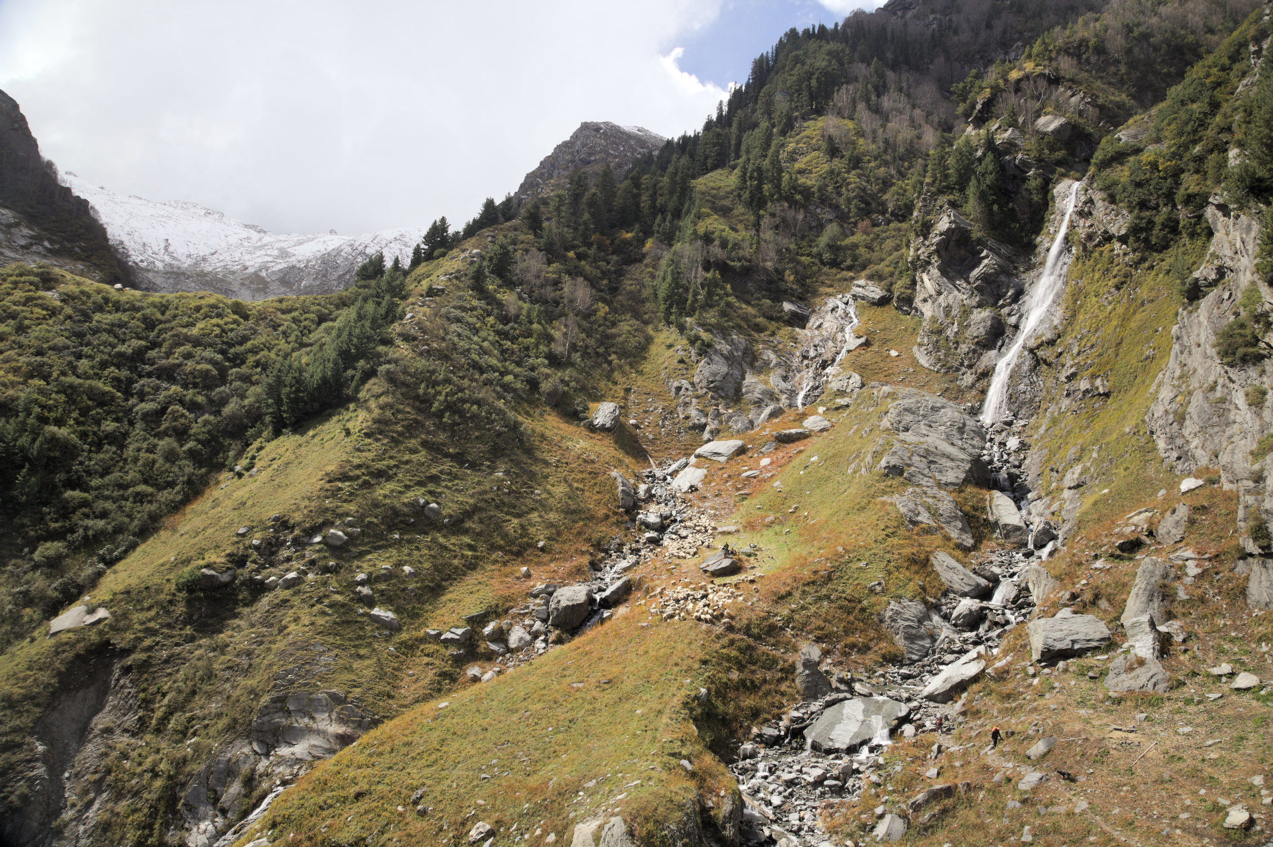 Gaddis and their flock on their way towards to Indrahar Pass, the last pass in the Himalayas before reaching the southern plains. It is October and snow has already fallen on the pass.