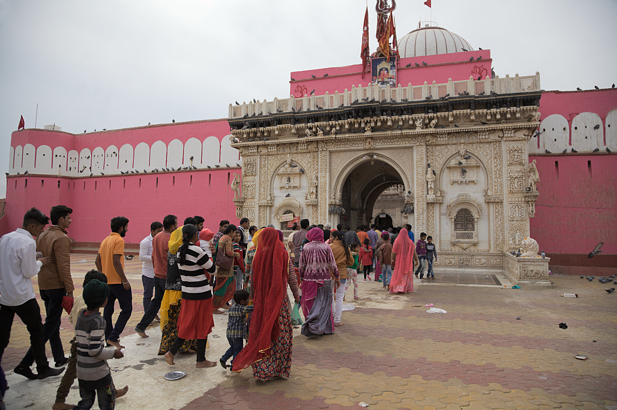 Worshippers entering Karni Mata temple in Rajasthan. This temple is home to thousands of rats and it is believed a sighting of a white rat will bring you luck.