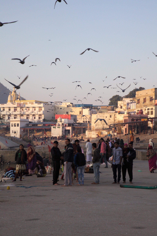 Pushkar ghats at sunrise