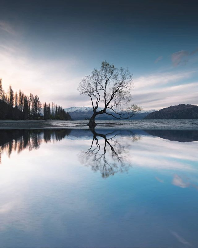 Last week I finally got to explore the South Island of New Zealand. Living in Australia I've always been so close to New Zealand but never really found the time to travel there. I've always wanted to shoot this part of the world so getting to shoot the iconic Wanaka Tree during sunset was amazing. I have a feeling I'm going to be going back to NZ a lot more frequently now. Where's somewhere you've always wanted to visit but never had the chance? #thatwanakatree #newzealand