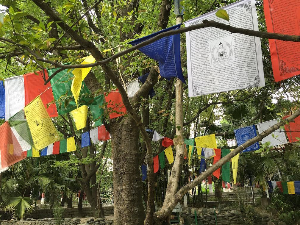 Buddhist Art Centre in Dharamshala