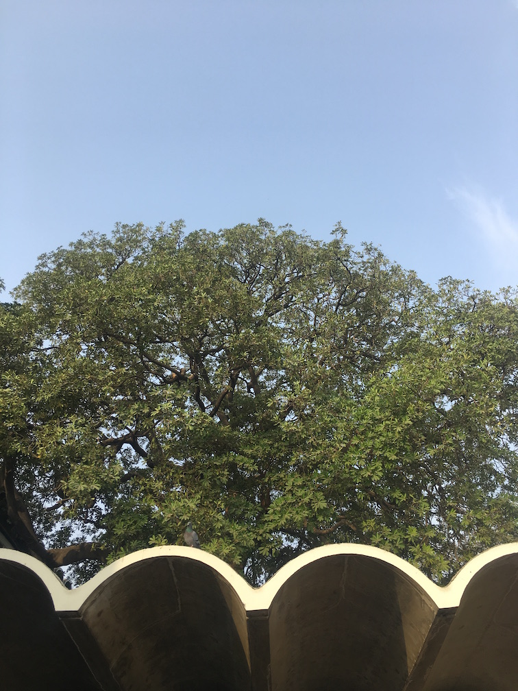 Post Independence Architecture in Delhi