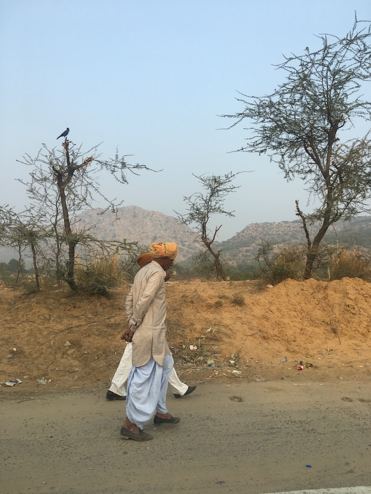 Roadtrip Via Rajasthan