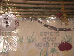 Lilach Daniel - Inside the Sukkah