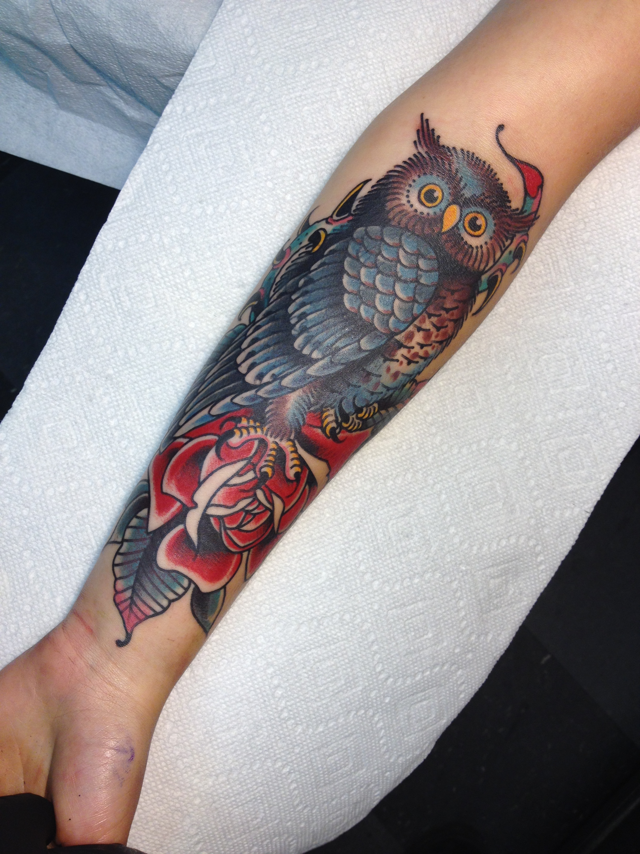 Owl on Rose