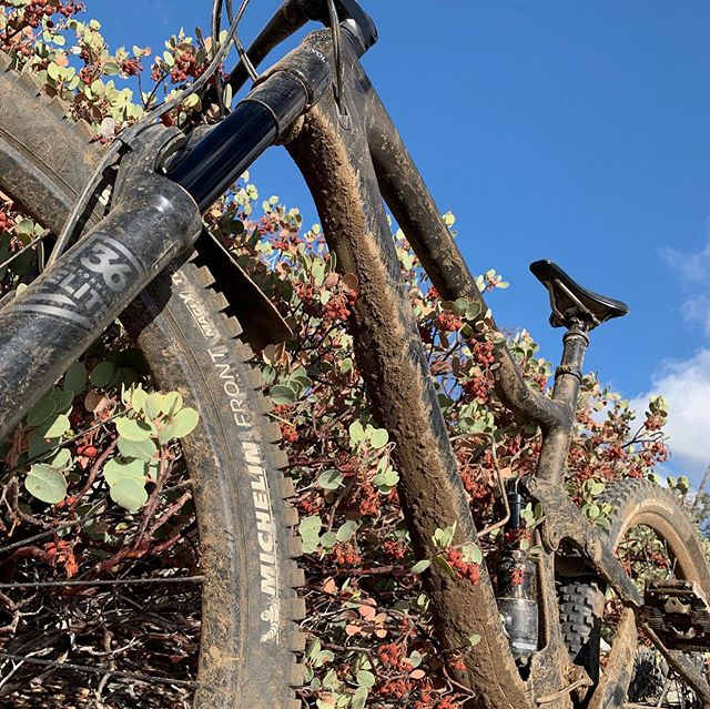 First fall rain brings the return of the #loam . Let's hope there's more on the way! #mountainbike #basslake #brownpow