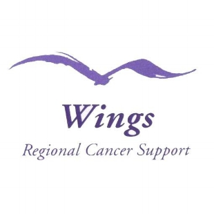 Wings logo.jpg
