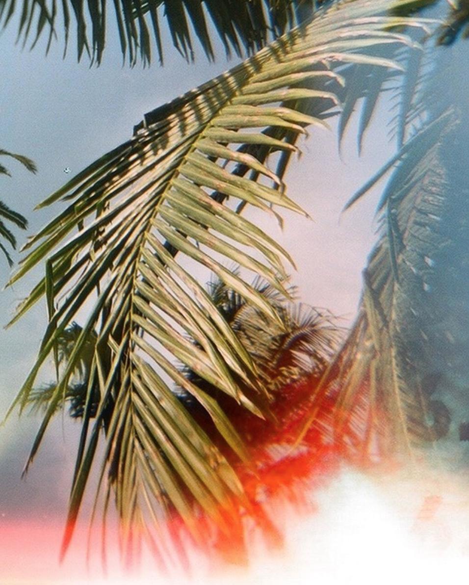 120mm Film Shot on a Holga