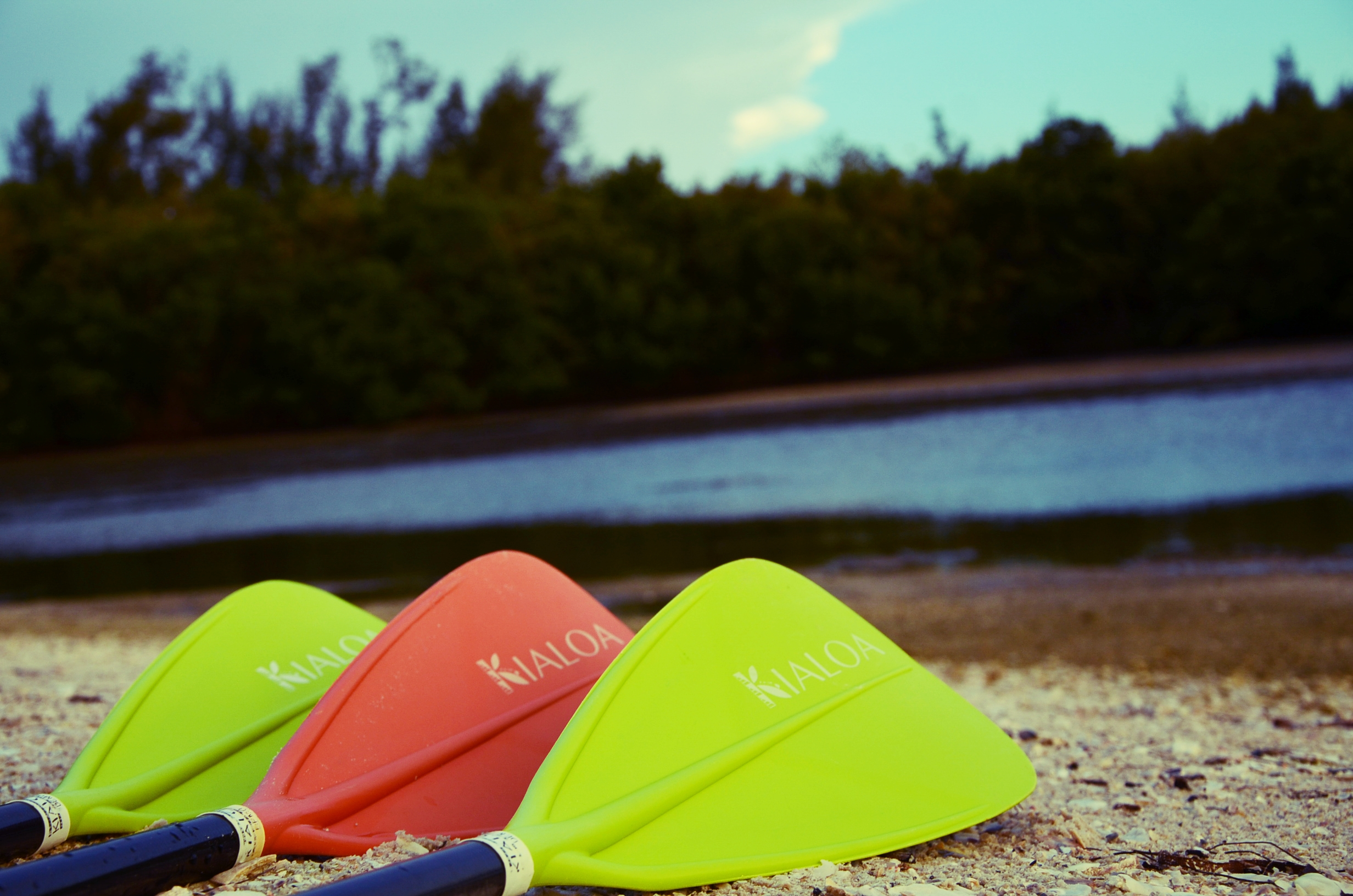 They type of paddle you choose will help shape your paddling experience.