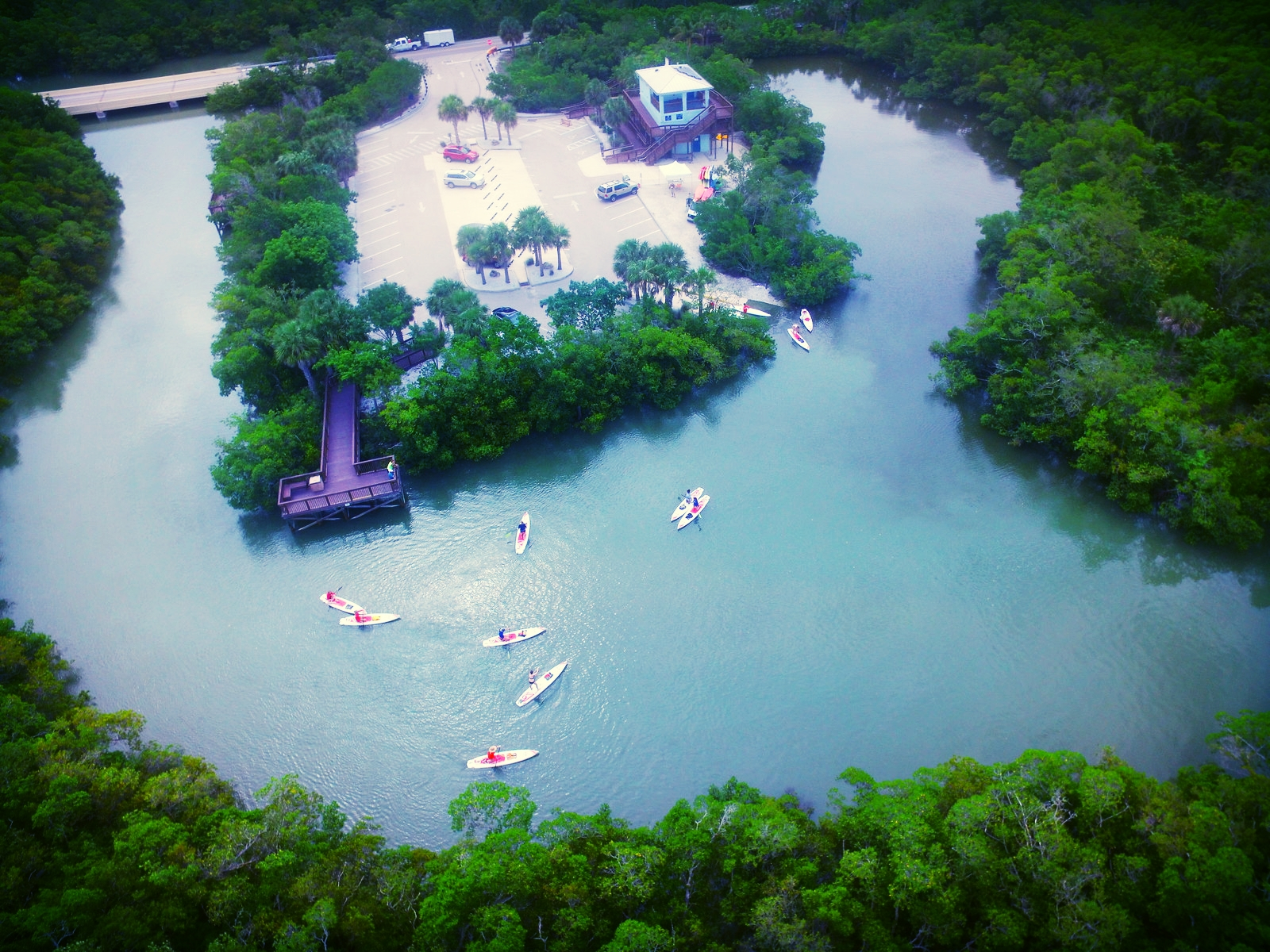 Bunche Beach Preserve provides many acres of beautiful, protected paddling territory.