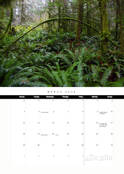 2019-bc-calendar-preview-03-march.jpg