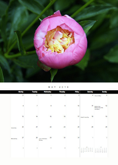 2019-bc-calendar-preview-05-may.jpg