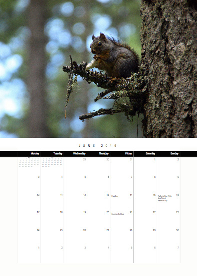 2019-bc-calendar-preview-06-june.jpg