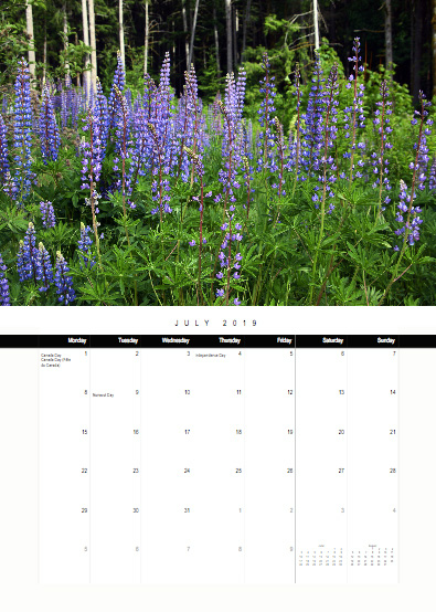 2019-bc-calendar-preview-07-july.jpg