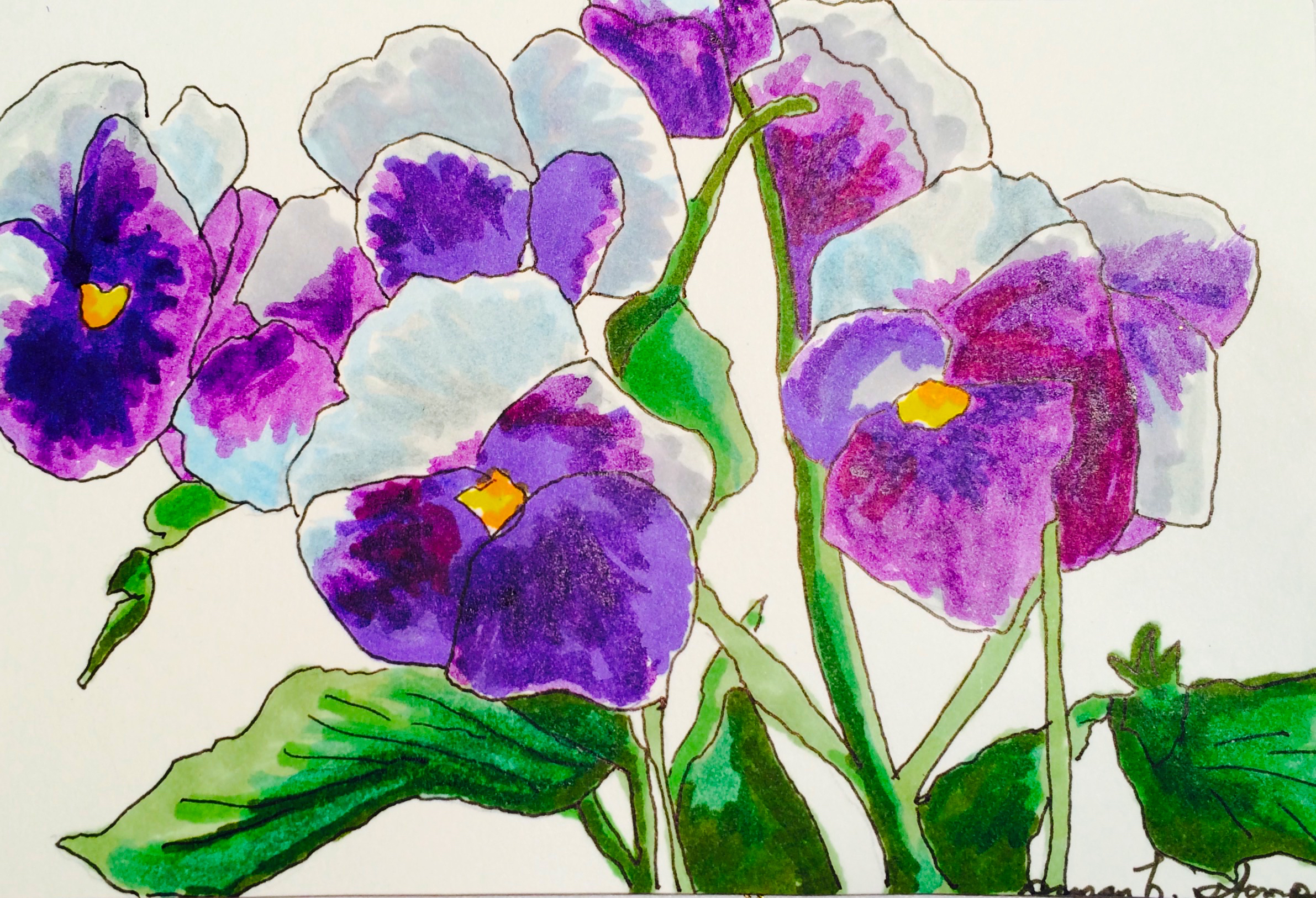 "SOLD  4"" x 6"" pen & ink on paper.  ""A Profusion of Pansies"""