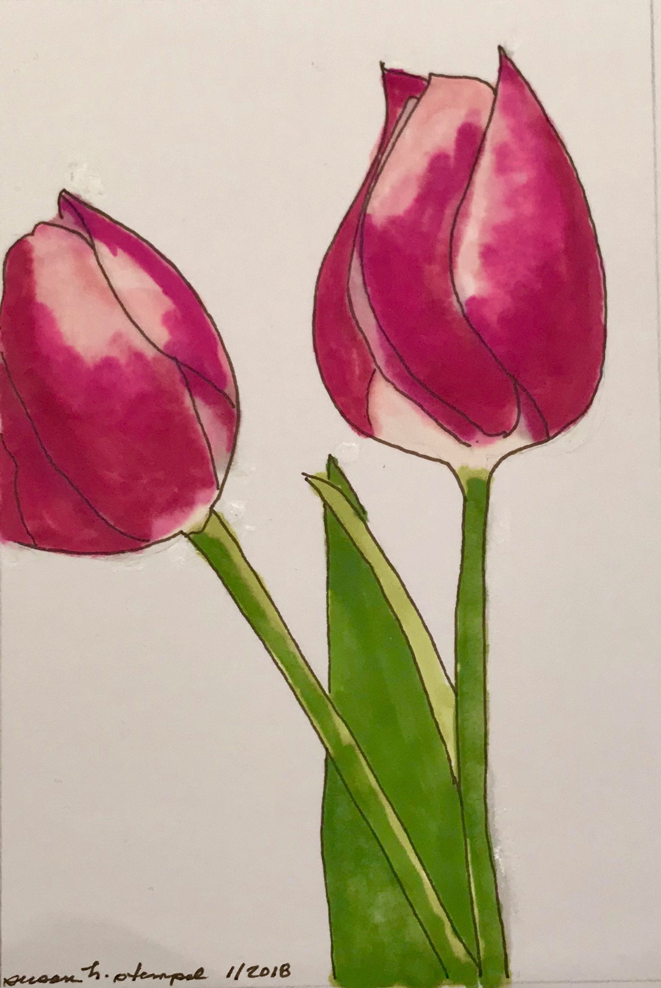 "$300. 5"" x 7"" pen & ink on paper. ""Two tulips"""