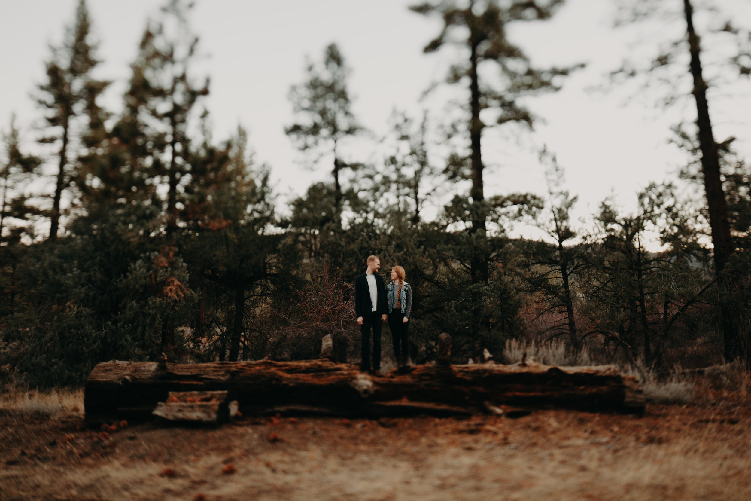 Mt Pinos Anniversary Session Grace & Brandon Emily Magers Photography-25.jpg