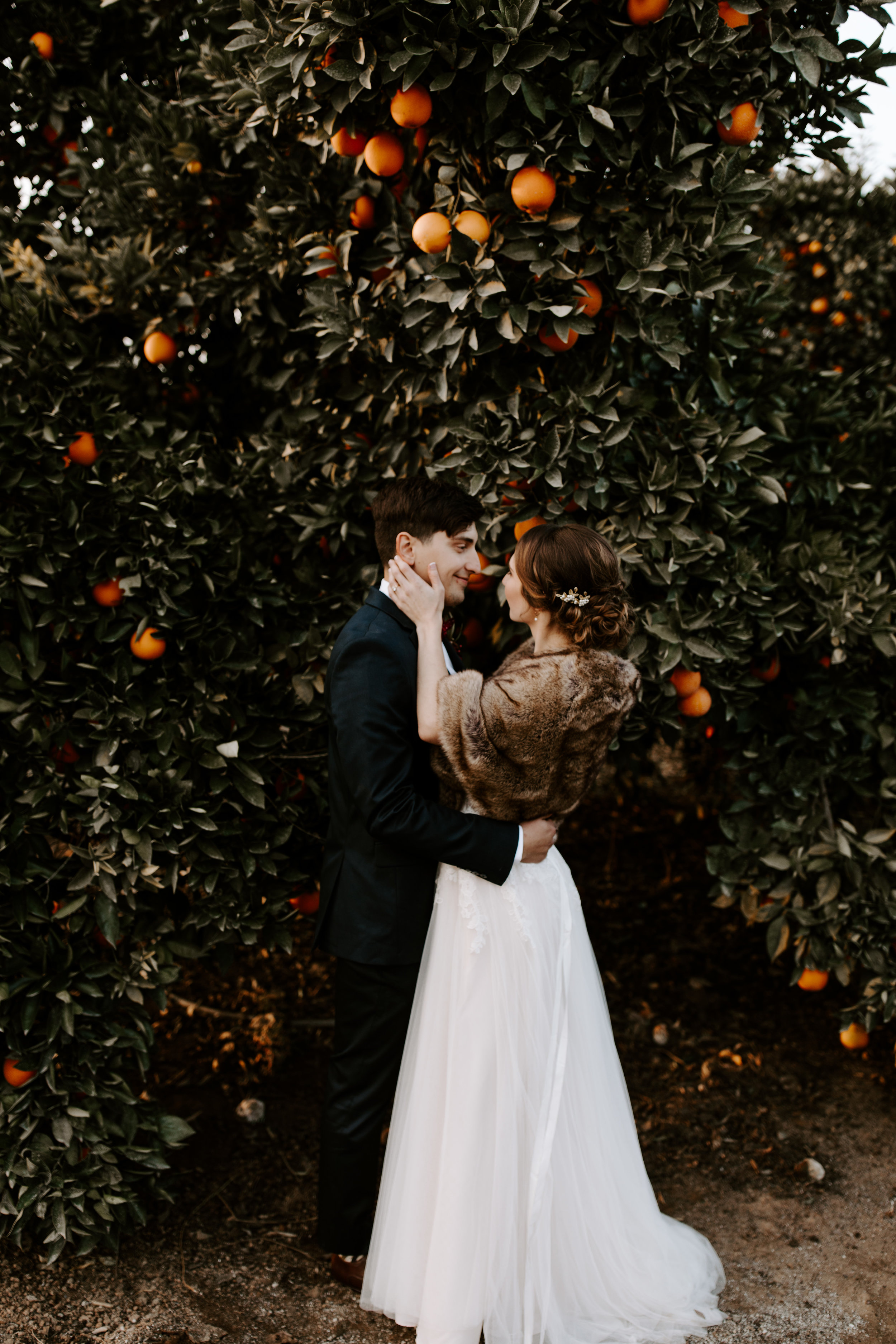 Seven Sycamores Ranch Wedding Gabby & Yosef Emily Magers Photography-636.jpg